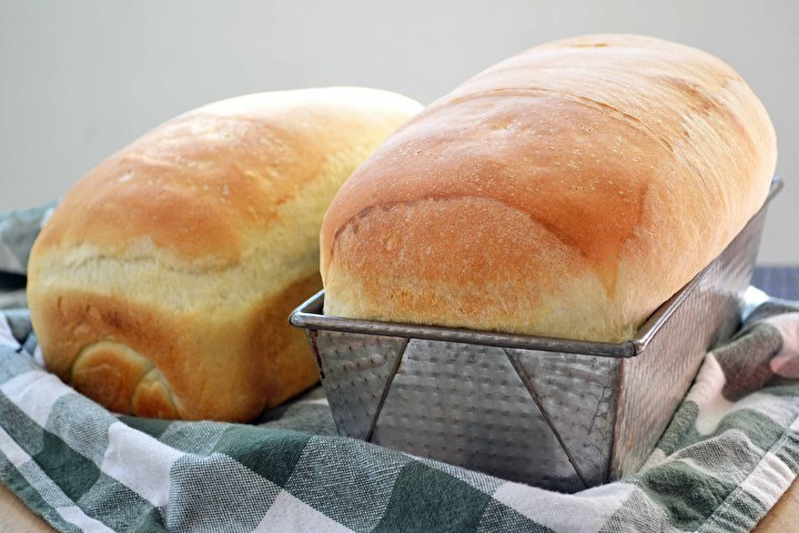 white_sandwich_bread